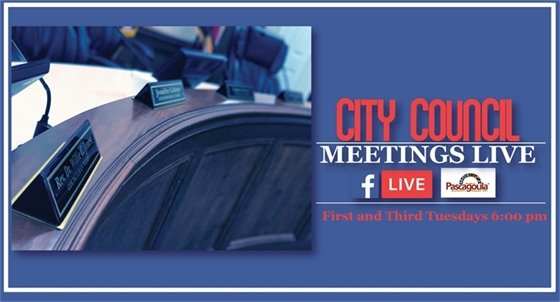 Council Meetings live